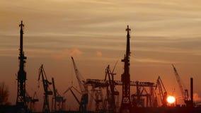 Timelapse des Behälterhafens in Hamburg bei Sonnenuntergang stock footage