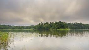 Timelapse des bewölkten Morgens auf einem Waldsee stock video