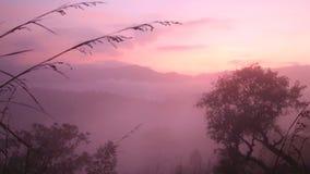 Timelapse des nebeligen Sonnenaufgangs auf der kleinen des Adams Spitze in Ella, Sri Lanka stock video footage