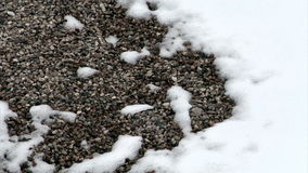 Timelapse des Schnees schmelzend auf Felsen stock video