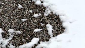 Timelapse des Schnees schmelzend auf Felsen stock video footage