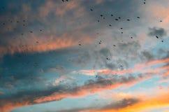Timelapse di sera con il tramonto e le nuvole Fotografie Stock