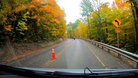 TimeLapse 10X die - onder Bomen na Motorfietsen voorbij Bouw tijdens Daling van Vermont drijven stock footage
