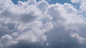 timelapse do cumuliform da nuvem 6K vídeos de arquivo