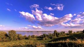Timelapse do prado do banco e da grama do oceano no tempo do verão ou do outono Natureza selvagem, costa de mar e campo rural vídeos de arquivo