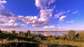 Timelapse do prado do banco e da grama do oceano no tempo do verão ou do outono Natureza selvagem, costa de mar e campo rural filme