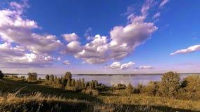 Timelapse do prado do banco e da grama do oceano no tempo do ver?o ou do outono Natureza selvagem, costa de mar e campo rural video estoque