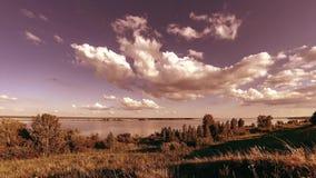 Timelapse do prado do banco e da grama do oceano no tempo do ver?o ou do outono Natureza selvagem, costa de mar e campo rural vídeos de arquivo