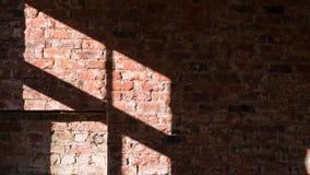 Timelapse do sol irradia mover-se sobre uma parede de tijolo em um espaço de escritórios filme
