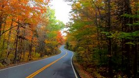 TimeLapse - Driving Under Trees and Around Curves as Trees Change Colors During Fall in Vermont