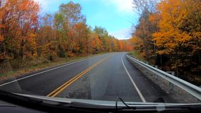TimeLapse 10X - Driving Under Trees in Peak Color During Fall in Vermont.  stock footage