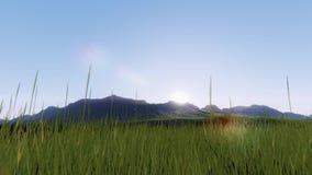 Timelapse działająca trawa w wschodzie słońca, Przychodzi od odległości royalty ilustracja