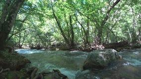Timelapse em um rio da montanha vídeos de arquivo