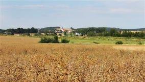 Timelapse en el campo con la iglesia, paisaje checo almacen de metraje de vídeo