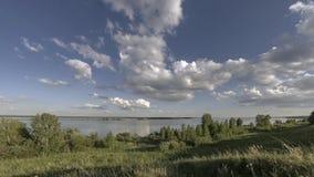 Timelapse för havbank- och gräsäng på sommar- eller hösttiden Lös natur, havskust och lantligt fält stock video