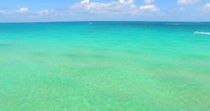Timelapse för Miami kryssningport strand florida miami USA arkivfilmer