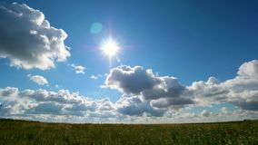 Timelapse of field of green grass and perfect sky. Dandelion field,blue sky and sun. Green field,blue sky and sun. Timelapse 4K stock video