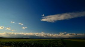 Timelapse field with sky and clouds on the horizon stock video footage