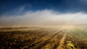 Timelapse fog over a field 1 stock video footage