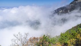 Timelapse footage of China Mountain Lu sea of clouds landscape in late autumn stock video