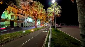Timelapse of Green Palm Trees at Night in Nice France on promenade stock video