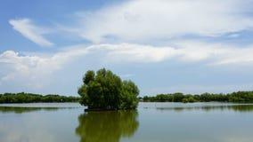 Timelapse: Il movimento del si rannuvola il lago, il tramonto archivi video