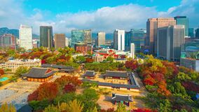 Timelapse 4k, Autumn leaves on Deoksugung Palace. In Seoul City South Korea And the blue sky