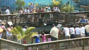 Timelapse - Key West Aquarium stock video