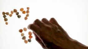 Timelapse La main du ` s d'homme écarte avec l'aide des coquilles l'expression : mon rêve D'isolement sur le fond blanc banque de vidéos