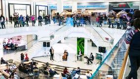 Timelapse-Leute in der Einkaufszentrenhalle mit Treppe und Rolltreppe stock video footage