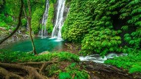 Timelapse Majestic waterfall Banyumala in the rainforest in Bali, Indonesia. 4K Timelapse in Bali Island, indonesia stock footage