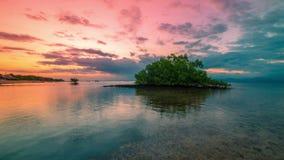 Timelapse-Mangrovenbaum in der Ebbe auf dem Sonnenuntergang in Nusa Lembongan, Bali, Indonesien stock footage
