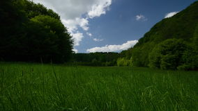 Timelapse meadow grass forest sky clouds 4k UHD stock footage