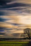 Timelapse movement of clouds at sunset with silhouette of tree and far reaching scenic landscape Royalty Free Stock Image