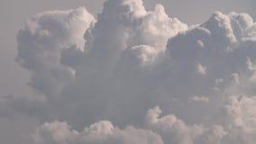 Timelapse - nubes de cumulonimbus del verano metrajes