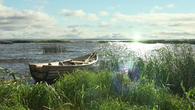 Timelapse of old wooden boat on the lake in the reeds, at sunset. The wooden boat rocks on the waves of the lake in the reeds, at sunset. Small fishing boat stock video footage