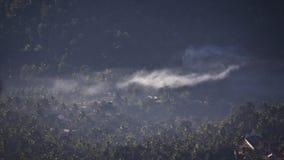 Timelapse opacifie le déplacement au-dessus d'une plantation dans l'Inde Andreev banque de vidéos