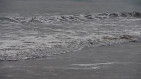 Timelapse pływowy, ocean fala na plaży zbiory wideo