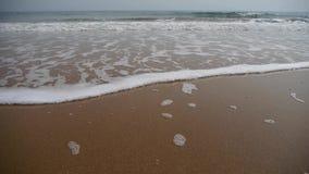 Timelapse pływowy, ocean fala na złotej plaży zdjęcie wideo