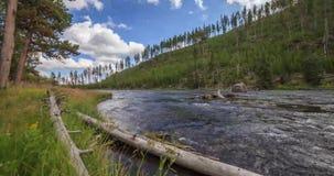 Timelapse parco nazionale del fiume Yellowstone, Yellowstone, Stati Uniti stock footage