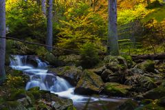 Timelapse Photography of Falls Near Trees Royalty Free Stock Images