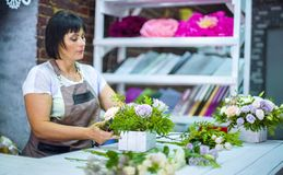 Timelapse professional florist arranging flower composition in wooden box in floral design studio. Caucasian female master in apron creating floral design royalty free stock photo
