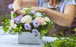 Timelapse professional florist arranging flower composition in wooden box in floral design studio. Caucasian female master in apron creating floral design stock photo
