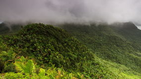 Timelapse Puerto Rico El Yunque stock video footage