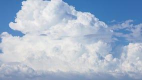 Timelapse que obliga de las nubes de cúmulo mullidas mágicas almacen de metraje de vídeo