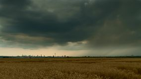 Timelapse - Rainclouds over a wheat field stock footage