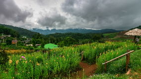 Timelapse scene of moving cloud over tropical forest hill. Chiang Mai, Thailand stock video