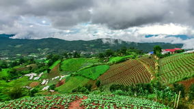 Timelapse scene of moving cloud over tropical forest hill. Chiang Mai, Thailand stock footage
