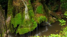 Timelapse schoss vom einzigartigen Bigar-Wasserfall in Rumänien stock video footage