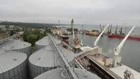 Panorama of ship loading grain crops on bulk freighter via trunk to open cargo holds at silo terminal in seaport. Timelapse of ship loading grain crops on bulk stock video footage